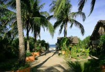 Bãi biển Jungle như một thiên đường bí mật thu nhỏ