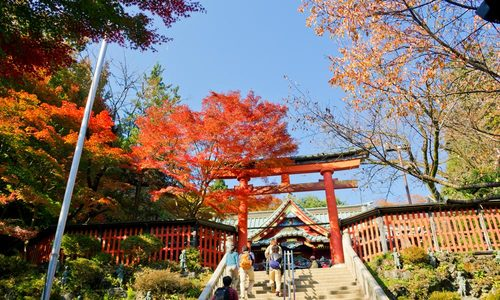 Núi Takao, Hachioji - Mùa thu Nhật Bản
